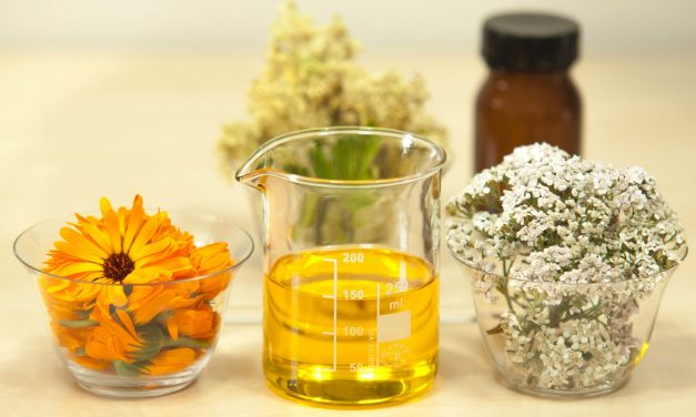 The Plant Oils & Essential Oils Which Will Boost Your Skin Care Regimen